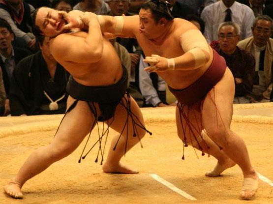 картинки сумо каратэ этом безумном